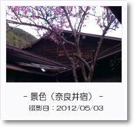 - 景色 - 奈良井宿